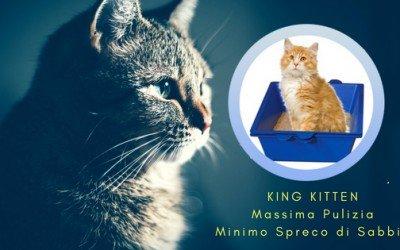Lettiera autopulente per Gatti King Kitten