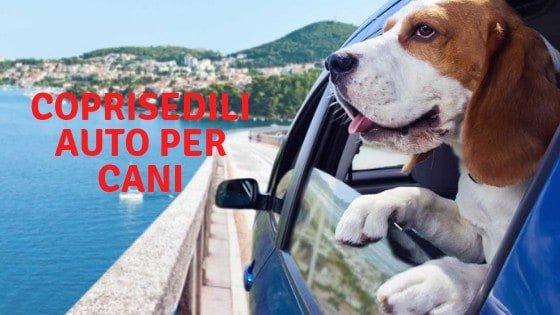 Coprisedile Auto Per Cani – La nostra Recensione